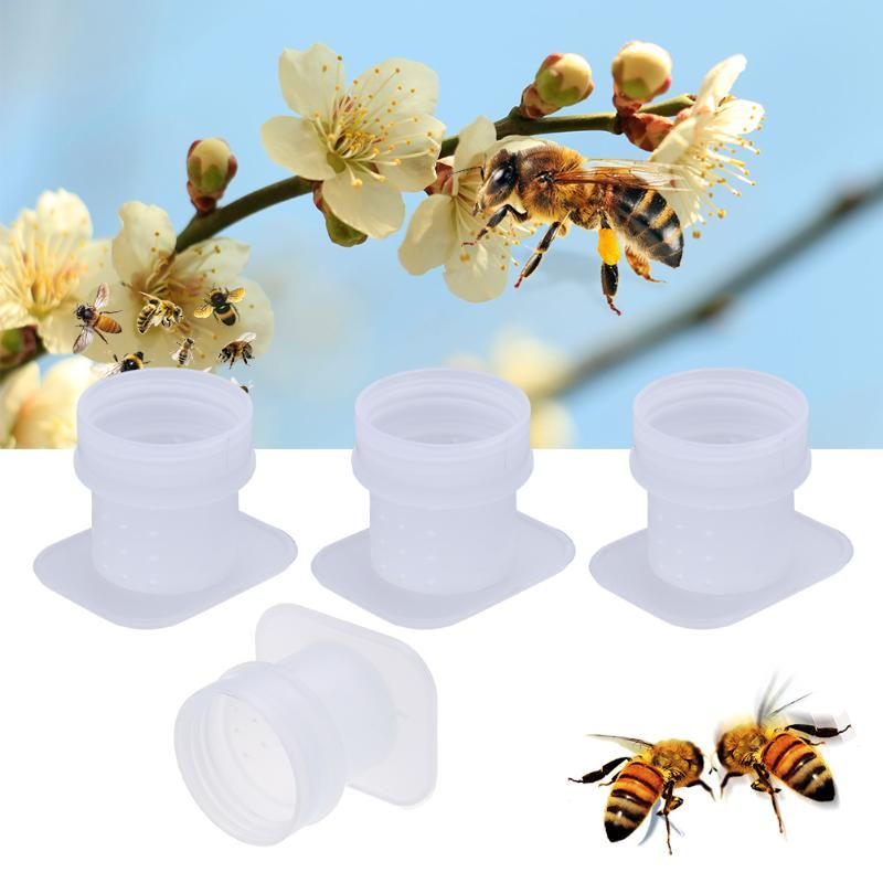 10pcs Bee Water Feeder Bee Drinking Water Equipment Automatic