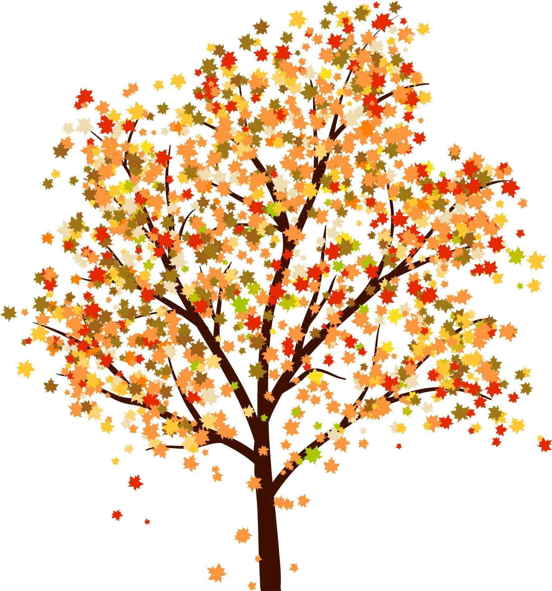 fall trees drawing tumblr   autumn crafts   Pinterest ...