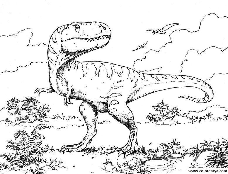para colorear | Dino | Dinosaur coloring sheets, Dinosaur coloring