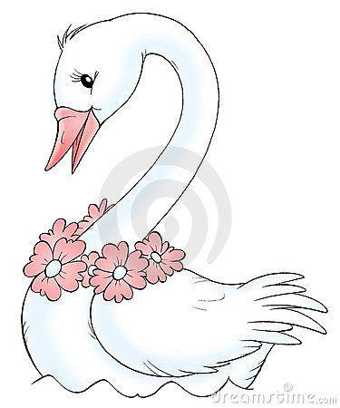 Cisne Blanco Cisne Blanco Imagenes De Cisnes Ilustracion De Hada