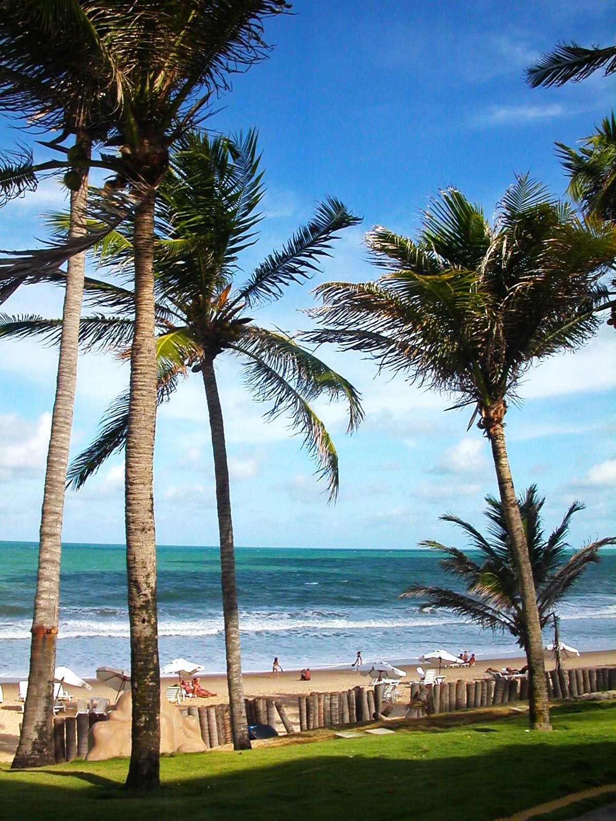 Natal. Brasil. (02/2011)