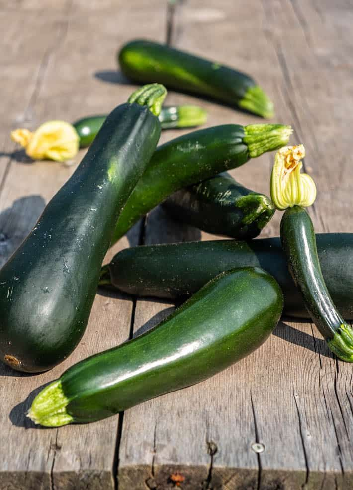 It S Zucchini Season How You Ve Been Growing Them All 400 x 300