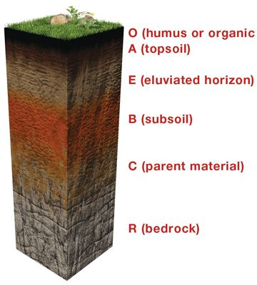 What is soil soils are complex mixtures of minerals for What are soil minerals