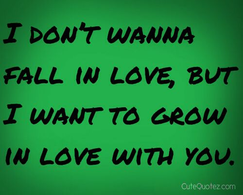 I Dont Want To Fall In Love With You I Wanna Grow In Love With You I Added The Last Part Cuz Falling Hurts Too Much