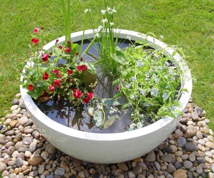 Petit bassin aquatique en r cipient faire soi m me 13 id es super originales bassin - Plantes aquatiques pour petit bassin ...