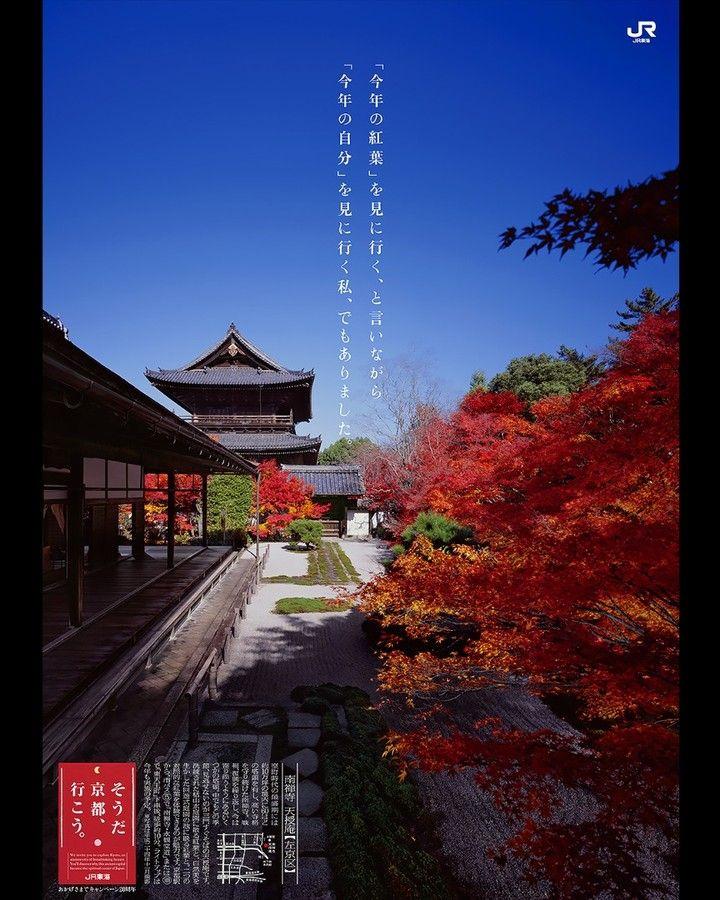 """そうだ京都行こう on Instagram: """"そうだ 京都、行こう。SINCE1993 ..."""