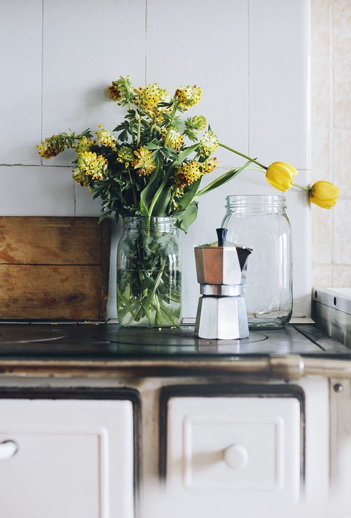 Takes from the garden diary: yellow