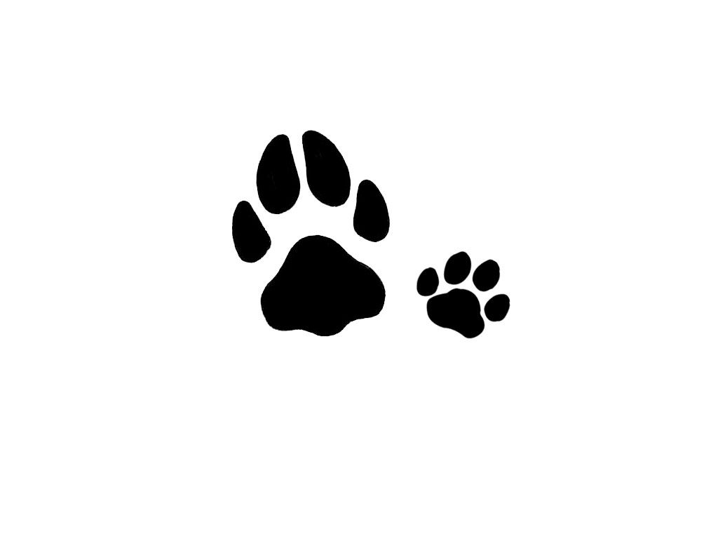 Tattoos With Hearts And Dog Paws Cat And Dog Tracks