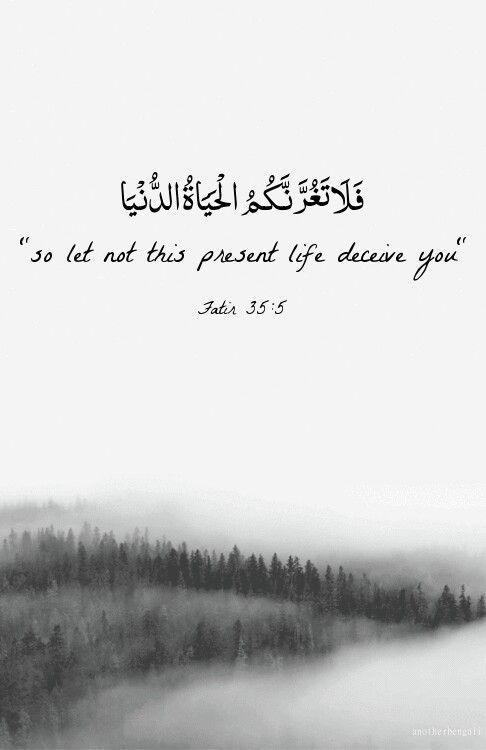 Beautiful Quran Quotes For Daily Reminder And Motivation Come With Cool Quotes Quran