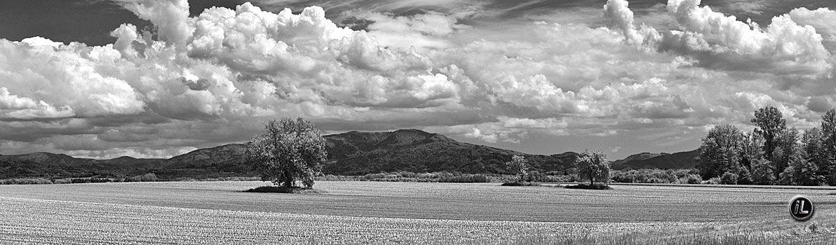 Panoramafotografie Der Schwarzwald