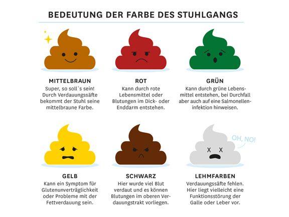 Stuhlgang Was Ist Normal Farben Bedeutung Gesunde Ernahrung Tipps Gesundheit