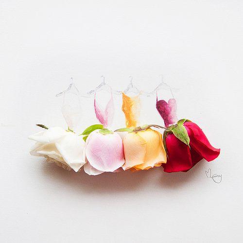 Wardrobe full of roses by lovelimzy, via Flickr