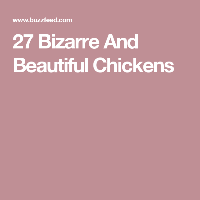 27 Bizarre And Beautiful Chickens