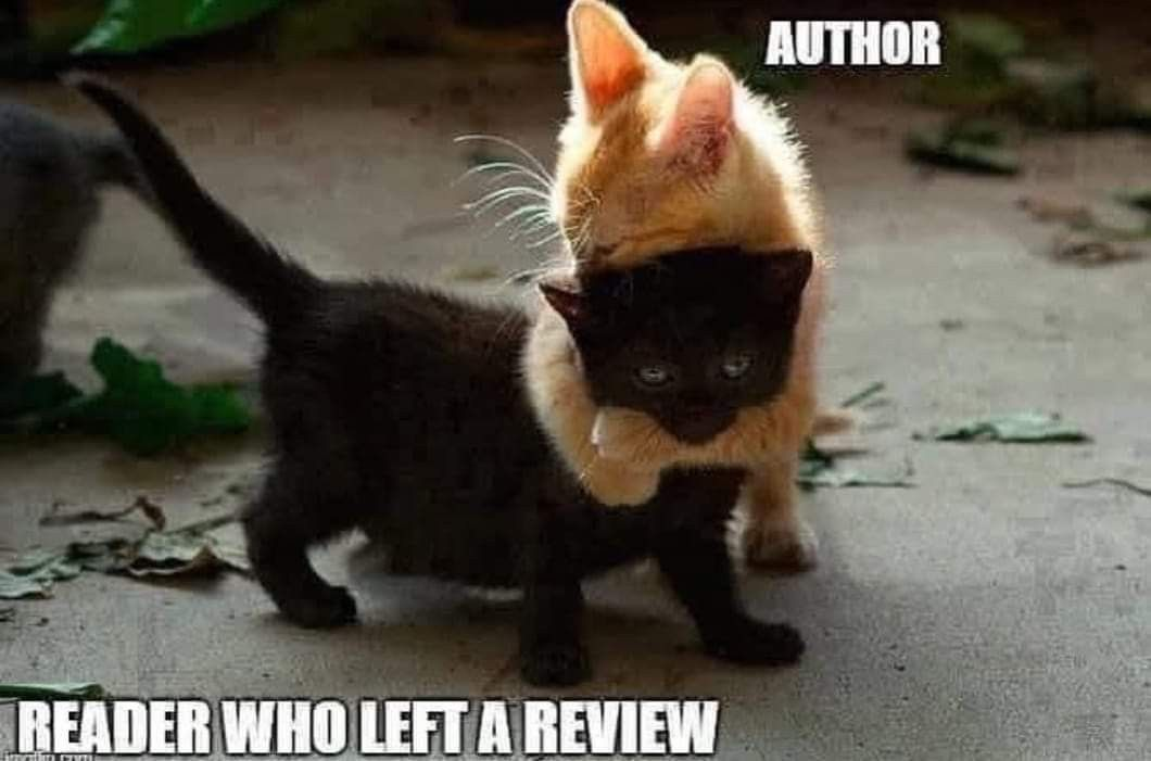 Cute cartoon animals image by Elizabeth Neal on Book Memes