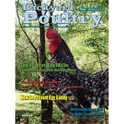 Backyard Poultry Magazine   1 Year Subscription From My Pet  Chicken.............ordering This For Sure. | Farm Animals Info | Pinterest  | Backyard Poultry, ...