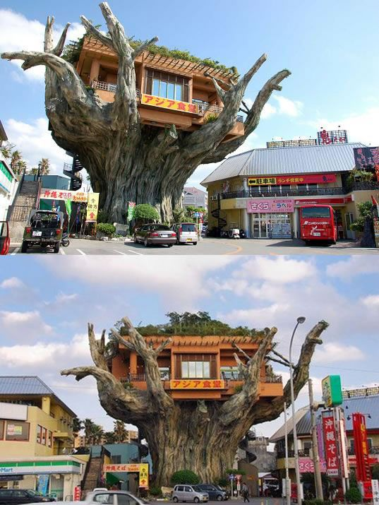 OK, a treehouse café is not a park café, but it is too special not to include in this collection. Banyan Treehouse Café, located in Onyama Park in Okinawa, Japan.
