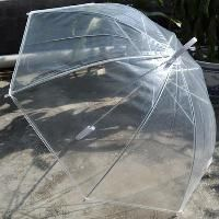 Wholesale Clear Umbrella - Buy Cheap Clear Umbrella from Best Clear Umbrella Wholesalers | DHgate #clearumbrella Wholesale Clear Umbrella - Buy Cheap Clear Umbrella from Best Clear Umbrella Wholesalers | DHgate #clearumbrella Wholesale Clear Umbrella - Buy Cheap Clear Umbrella from Best Clear Umbrella Wholesalers | DHgate #clearumbrella Wholesale Clear Umbrella - Buy Cheap Clear Umbrella from Best Clear Umbrella Wholesalers | DHgate #bestumbrella Wholesale Clear Umbrella - Buy Cheap Clear Umbrel #clearumbrella