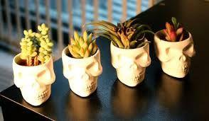 Skull Planter Pots
