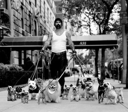 Love This Dog Walker Nyc Dogs Dog Pictures