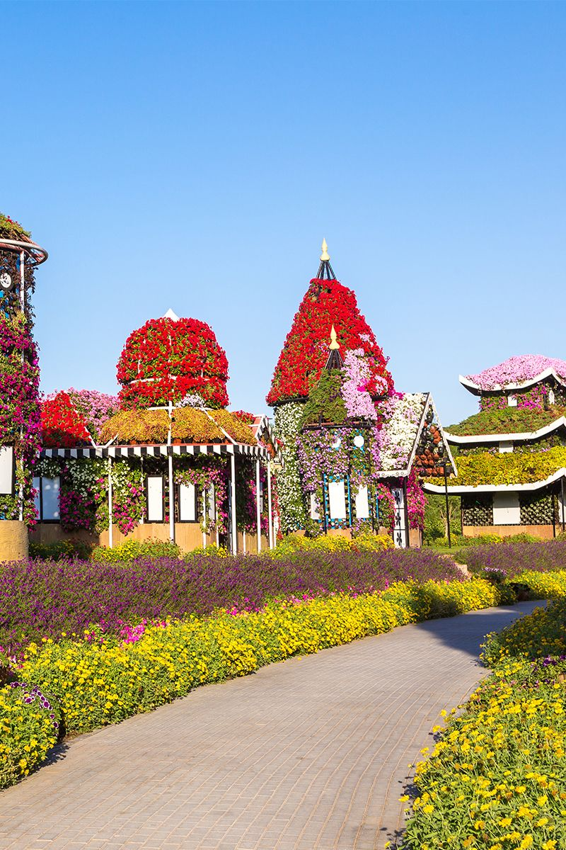 How beautiful is the Dubai Miracle Garden? Which homes 45
