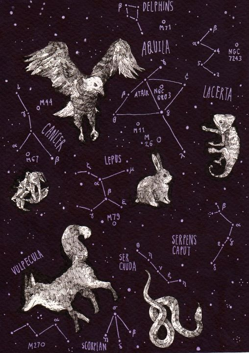 Pin By P PetrasAmes On Ceiling    Chart Star And