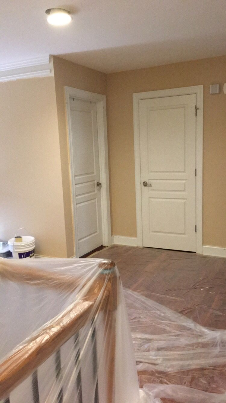Sherwin Williams Croissant Home In 2019 Interior Paint Colors