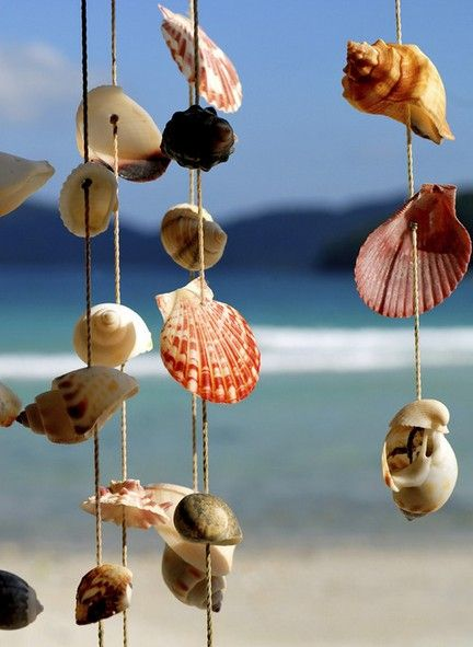 pretty shells to hang on the porch