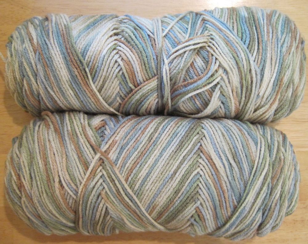 Qty 2~Ombre Green Cream Blue Brown~13 oz Total~Worsted~Acrylic Yarn Skeins