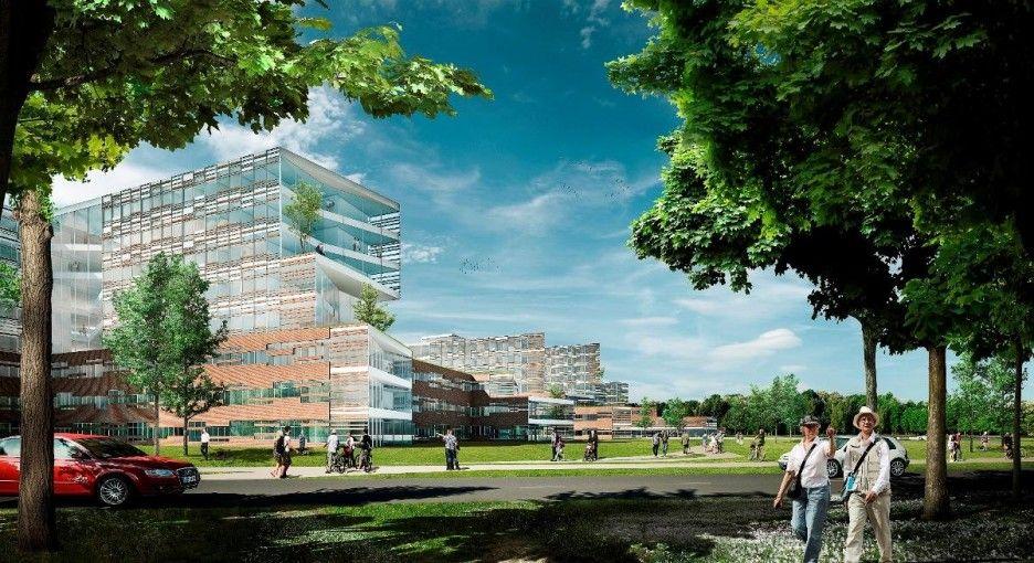 Striking University Hospital Architecture Design Concept: Natural Fresh False Forest Køge University Hospital Environment