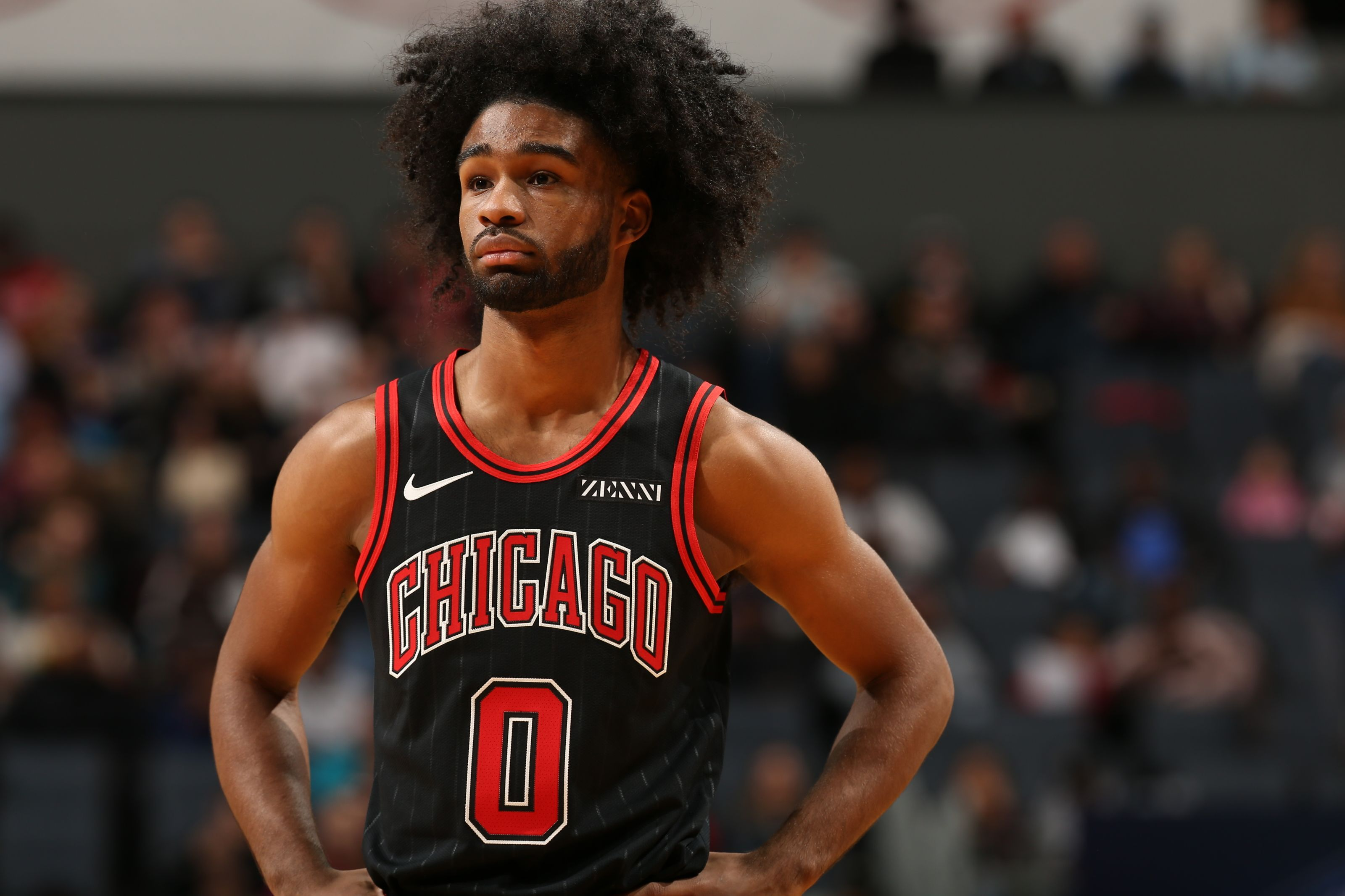 The Chicago Bulls should conduct an experiment tonight