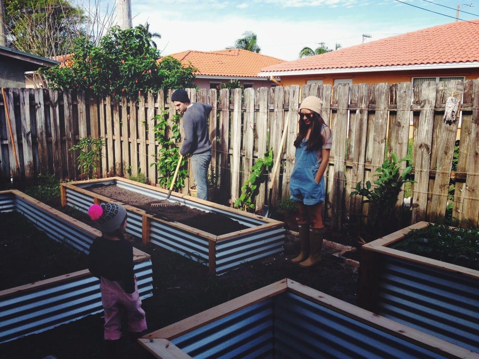 Building Raised Vegetable Garden Box