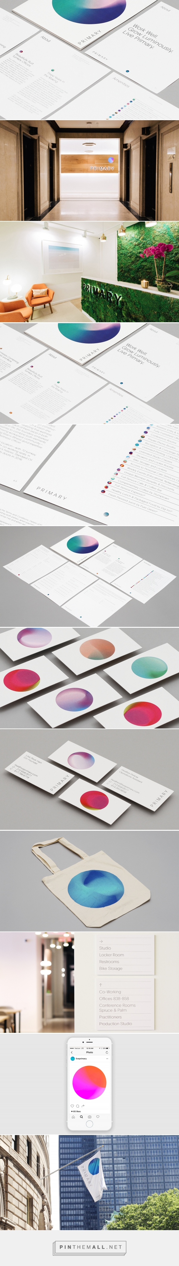 New Logo & Brand Identity for Primary by DIA — BP&O... - a grouped images picture - Pin Them All
