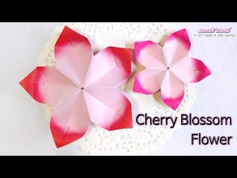 Origami cherry blossom flower youtube hobbies pinterest origami cherry blossom flower youtube mightylinksfo