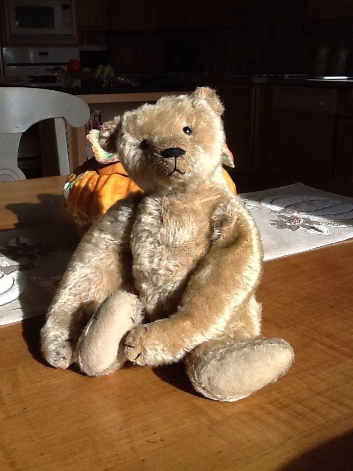 "ANTIQUE Vintage 1906 ""Uncle RemusTeddy Bear"" ~ Beige Mohair ~ Strung"