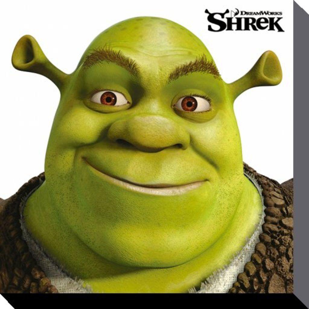 Shrek Face Canvas Print 40 X 40 Cm Shrek Drawing Shrek Character Shrek