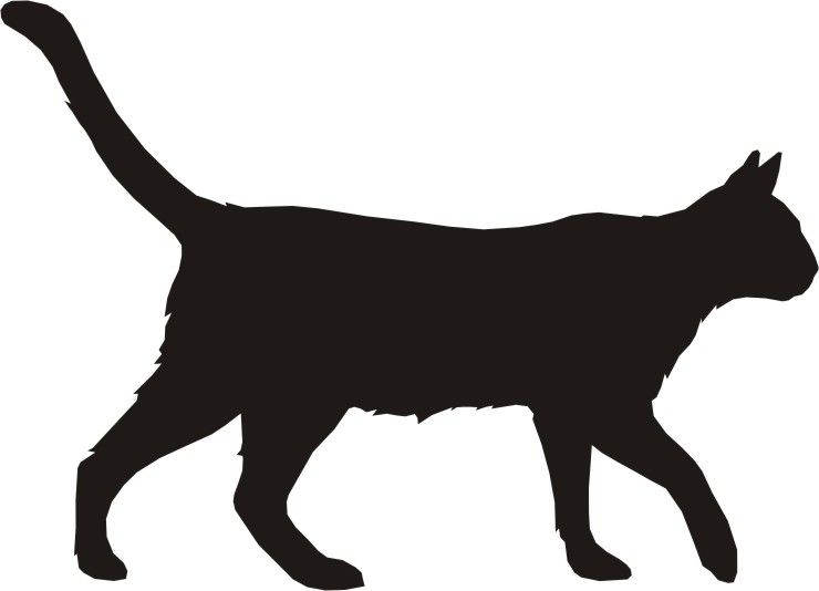 Cat Running Clipart