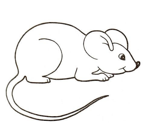 Cute House Mouse Coloring Page From Mice Category Select From 25105 Printable Crafts Of Cartoons N Mouse Drawing Coloring Pages Free Printable Coloring Pages