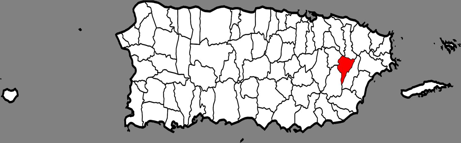 Juncos Located On The Map Of Puerto Rico Juncos Localizado En El Mapa De Puerto Rico Manati Amazing Maps Map