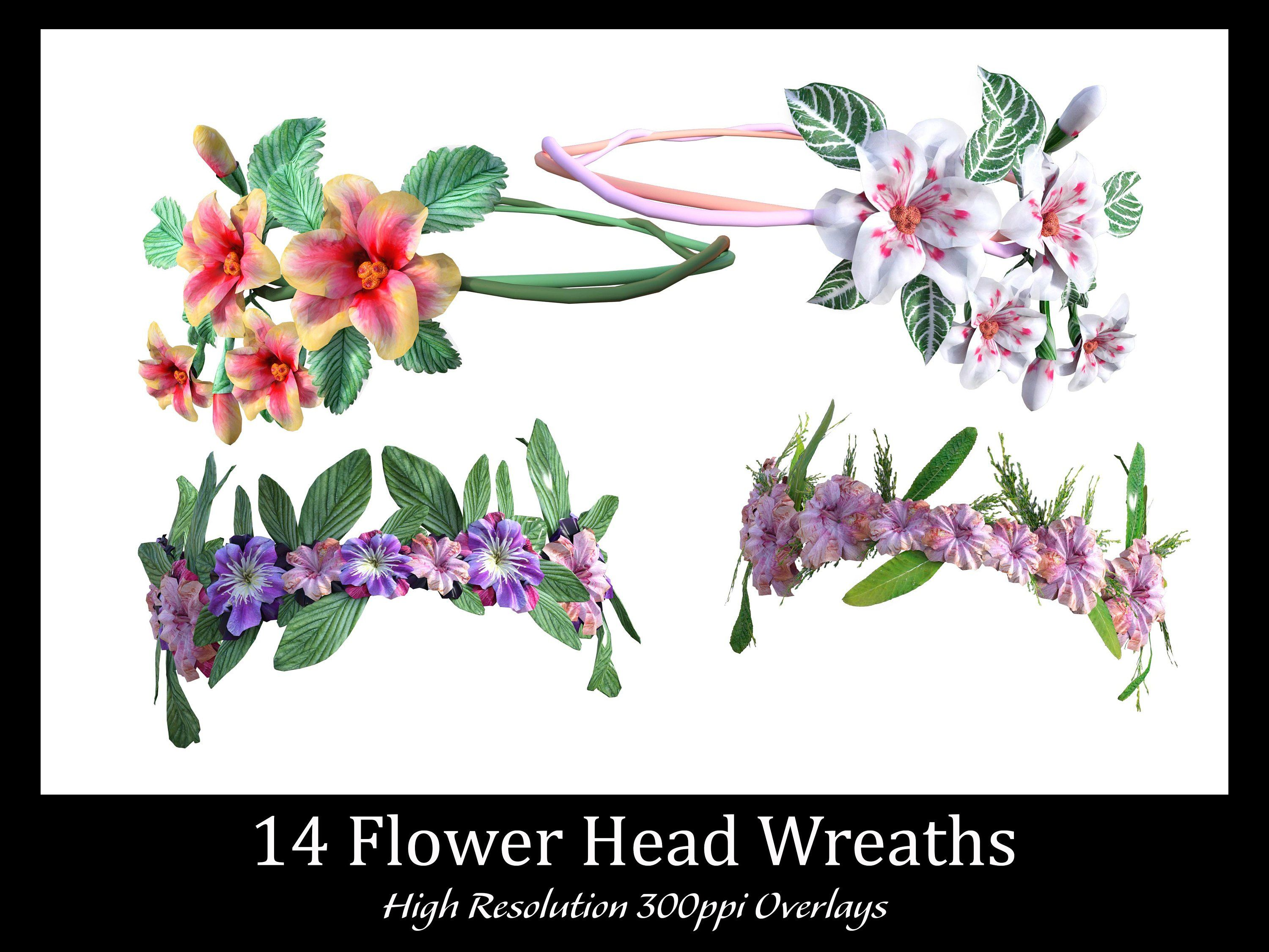 14 Flower Head Wreath Overlays, High Resolution, Instant Download