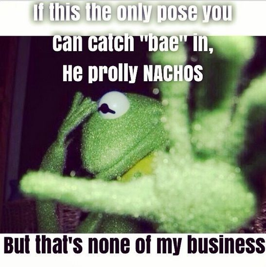 Pin On Kermit The Frog Quotes