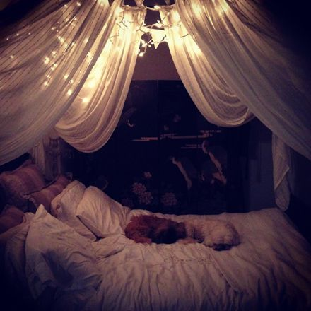 bed canopy with lights pinterest bangdodo. Black Bedroom Furniture Sets. Home Design Ideas