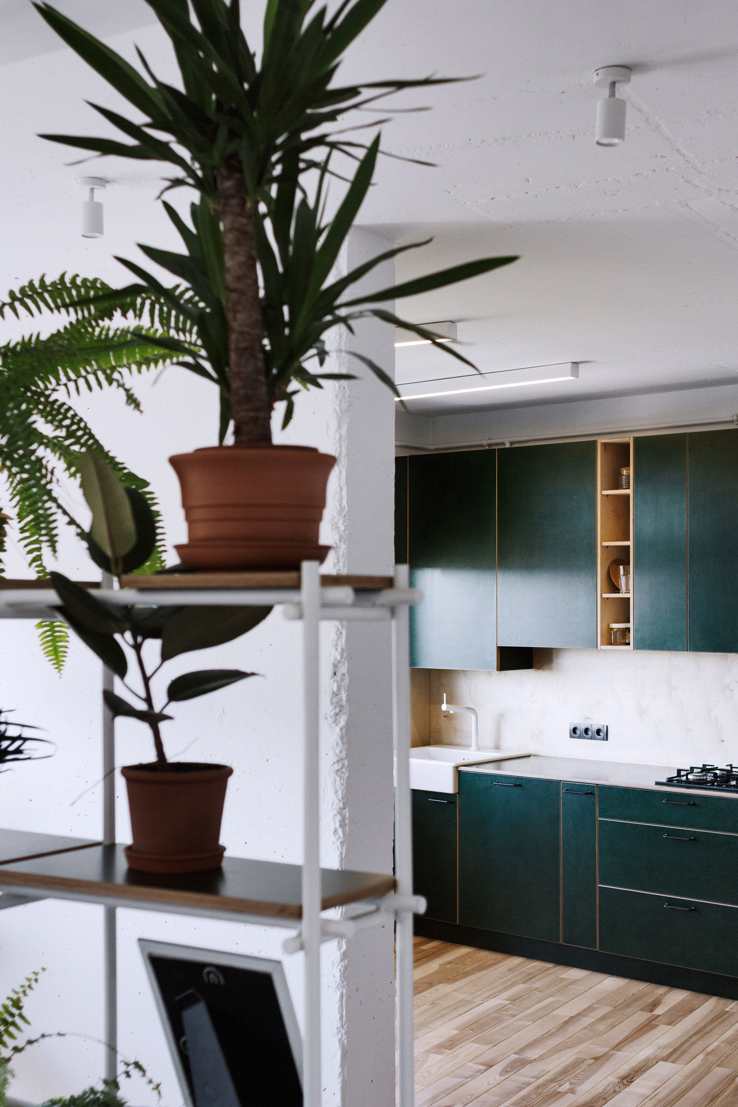 A Kitchen Decked Out With Forest Green Plywood Cabinets And A