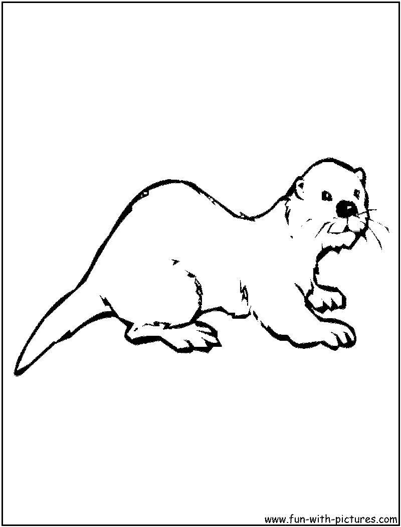 Coloring pages baby otters - Otter Coloring Page Of Otter