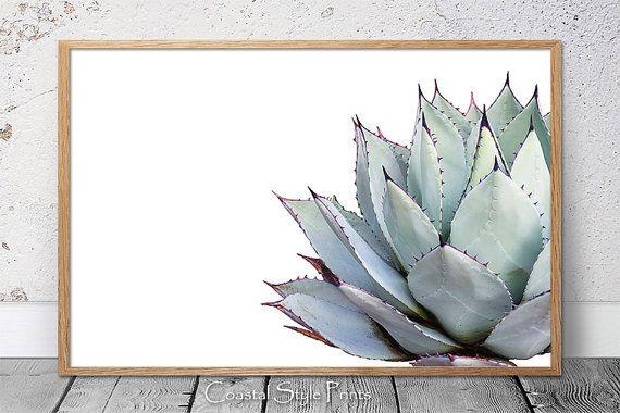 Landscape Orientation Cactus Print Succulent Cactus Gray Aqua Succulent Print Botanical Print Wall Art Poster Cactus Poster 108 Cactus Wall Art Succulents Prints Cactus Poster