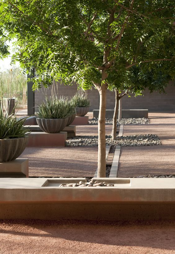 Arizona State University // Concrete And Stabilized Decomposed Granite: Landscape  ArchitectsGarden ...