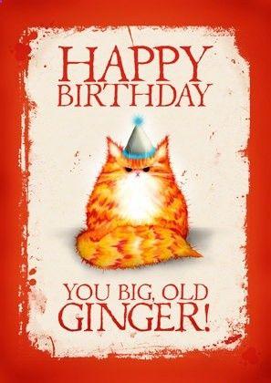 vertical-jump-training.club Birthday cat card: Happy Birthday You Big Old Ginger. 2.75, via Etsy. chwilaprzerwy.pl
