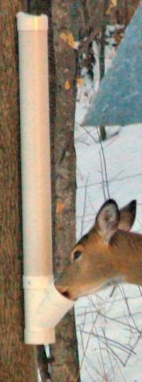 pvc pipe projects topic make a gravity feeder pvc you need this it s a deer feeder made out of pvc pipe be that way they ll stop eating your trees