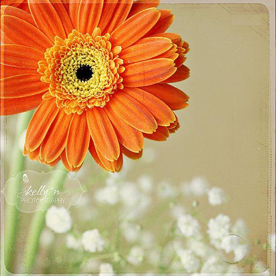 Flower Photography- Orange Gerbera Daisy, Floral Wall Art, Orange ...