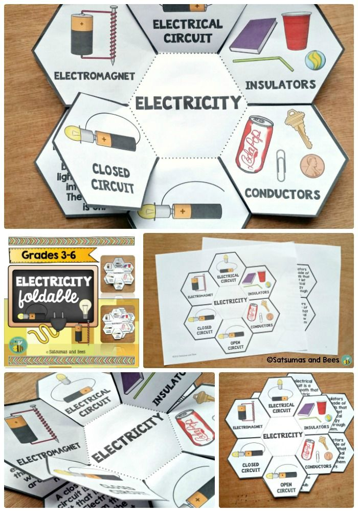 Electrical Circuit Conductors : Electricity and magnetism interactive science notebook