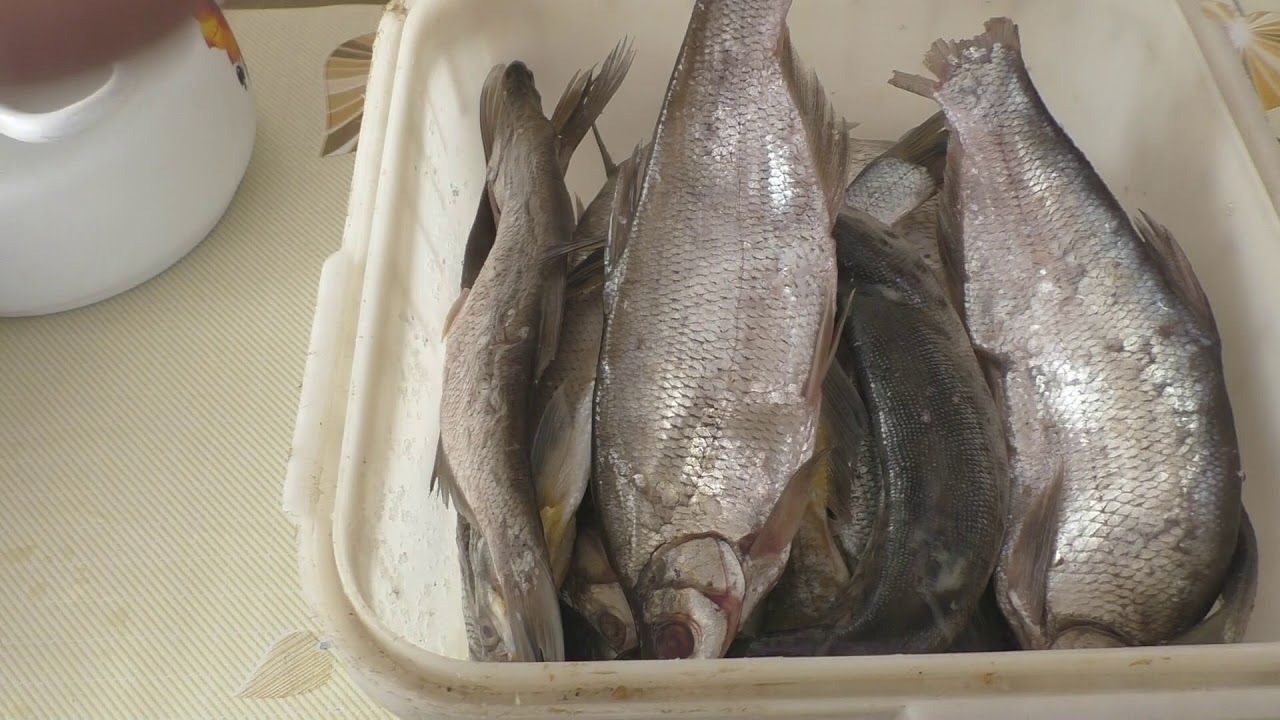 Photo of Sun-dried fish, How to salt correctly, how much to soak salted fish, My Recipes # Roach